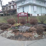 Maplewood Clean Sweep Project #5