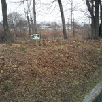 Maplewood Clean Sweep Project #3